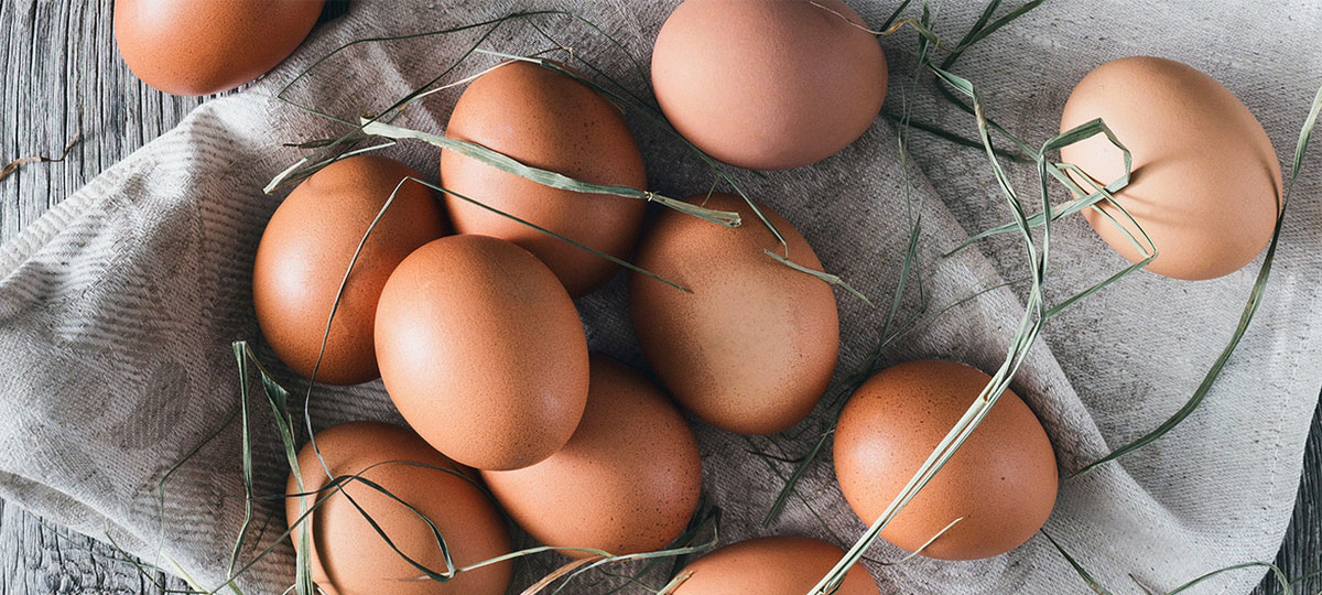 Huevos ecológicos: saludables esferas de sabor y calidad