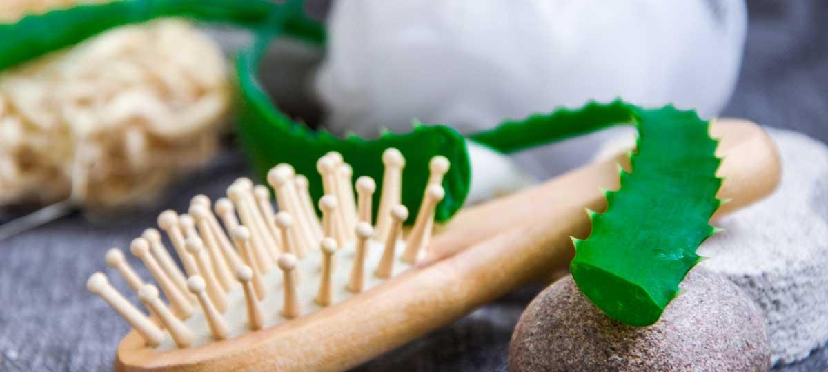 Aloe vera, bambú y cáñamo: secretos de belleza de la madre naturaleza