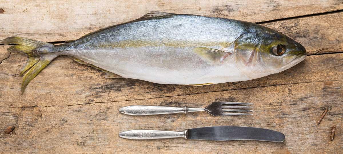 Pescado y mercurio: todo lo que debes saber para no preocuparte