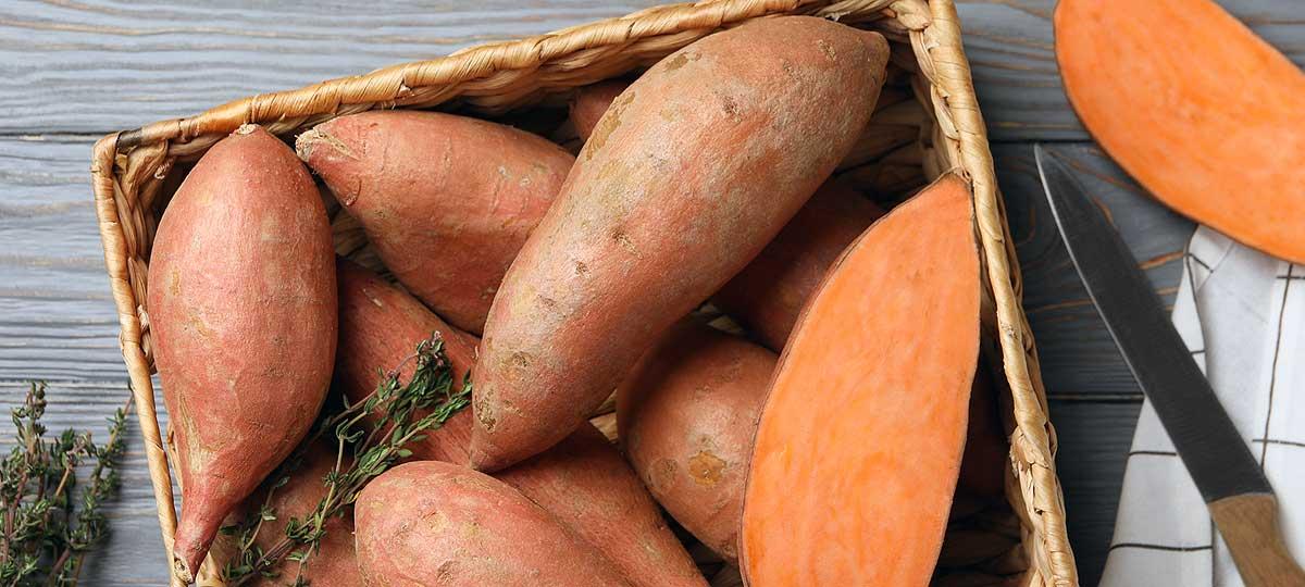 Patata vs boniato: diferencias, variedades y cuándo encontrarlos