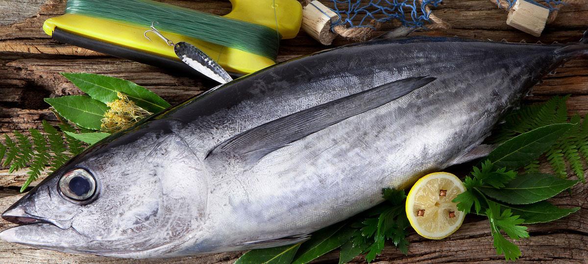 Producto temporada Bonito del Norte: el pescado que te llevarías a una isla desierta