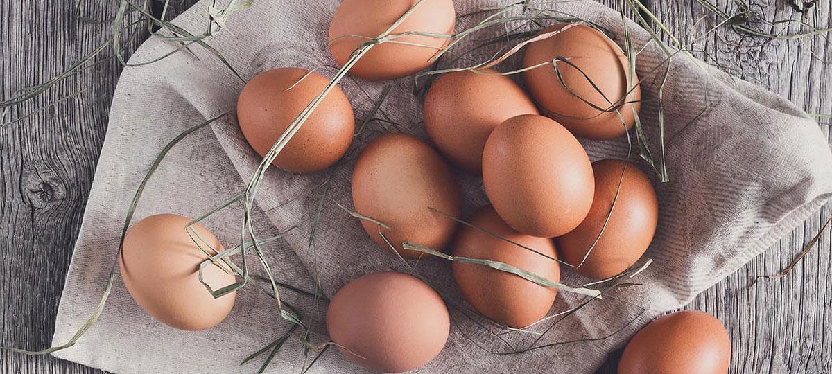 Huevos de gallina, ¿conoces las diferencias?