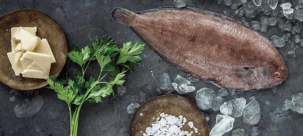 Lenguado: versatilidad y sabor en uno de los pescados más codiciados