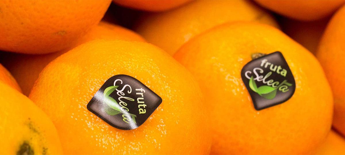 Mandarina, una dulce dosis de vitamina C en otoño