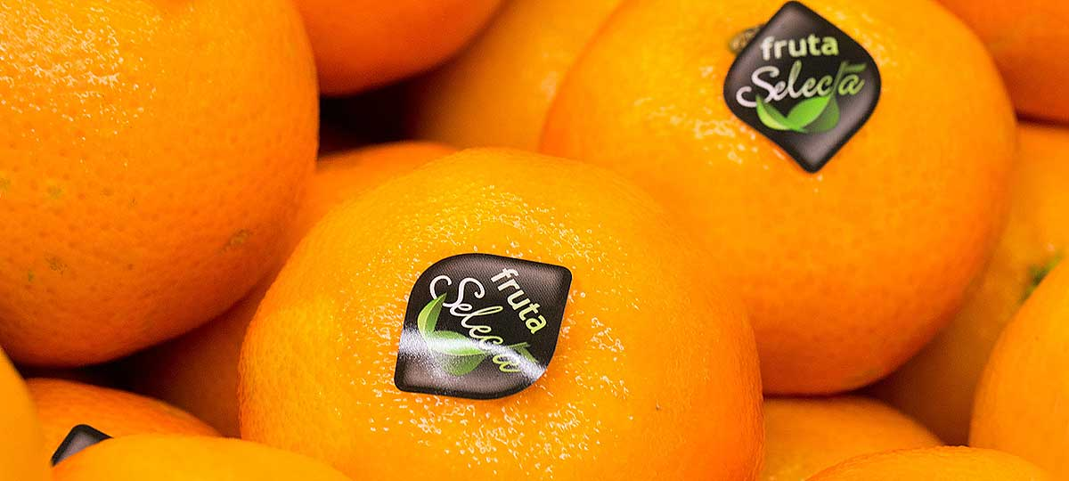 Mandarina, una opción ideal para tomar fruta en otoño