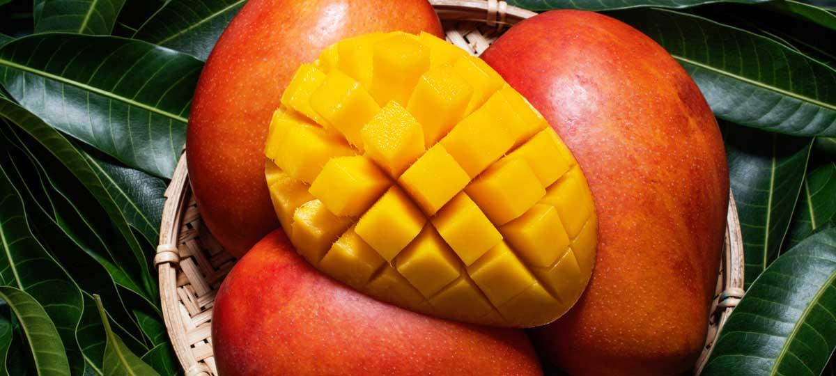 Temporada de mango: una fruta tropical muy cercana