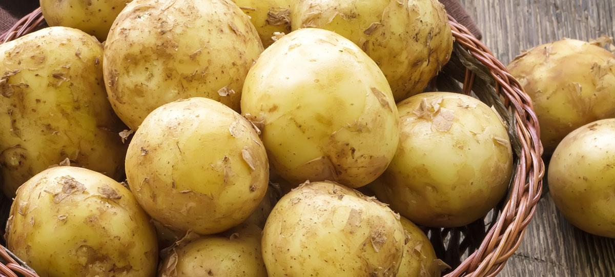 Patata nueva: joven tubérculo para grandes recetas