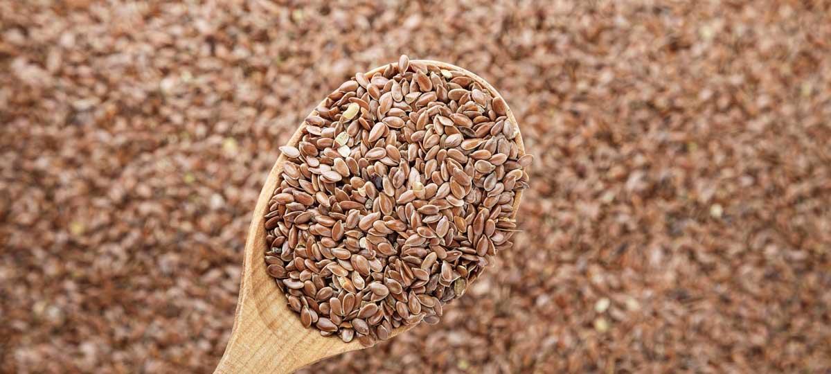 Semillas de lino: fuente alternativa de Omega-3 y Omega-6