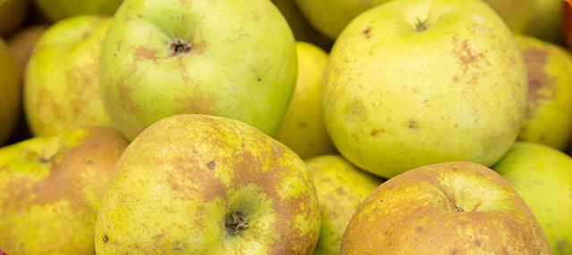 manzanas reineta