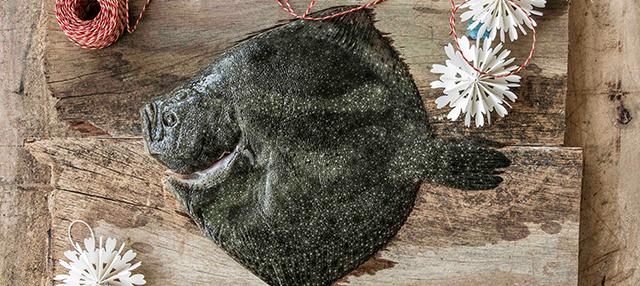 Como Cocinar Rodaballo | Bm Rodaballo Un Pescado Sabroso Y Saludable